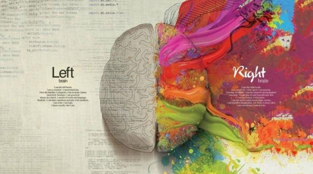 left_brain_right_brain-800x600